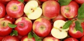 Яблоки. Как правильно выбрать яблоки.
