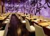 Новые необычные рестораны Санкт-Петербурга