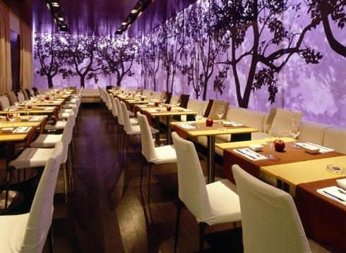 Рестораны Москвы - новые и лучшие рестораны, кафе и