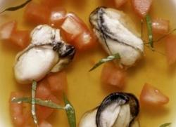 Суп из устриц. Рецепт супа из устриц.